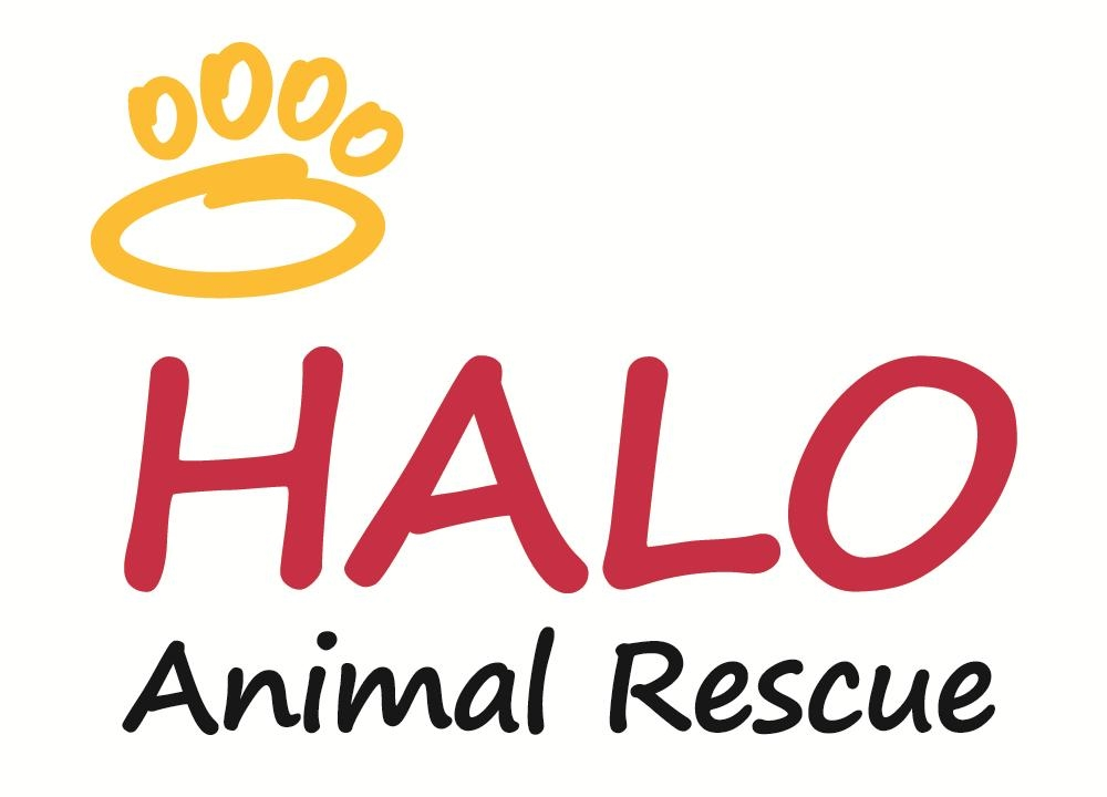 HALO Animal Shelter